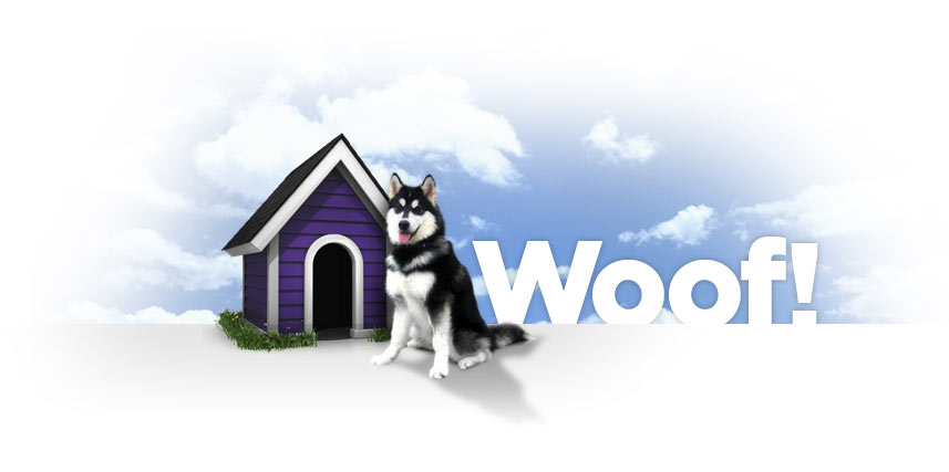 Dubs the Husky sitting in front of a dog house.