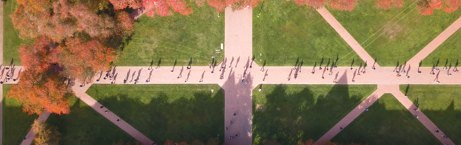 Top-down view of UW quad from a drone hovering above
